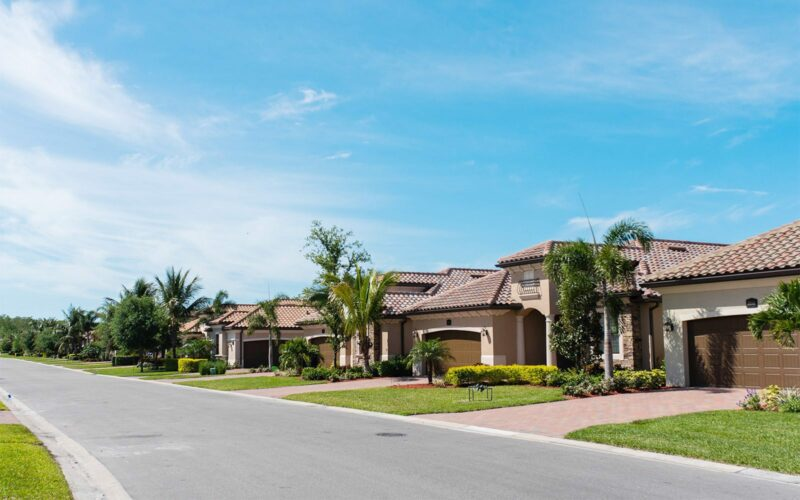 houses in a suburban area with palm trees