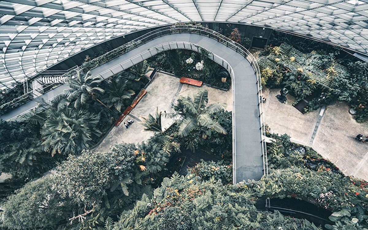 Green space in a large glass building.